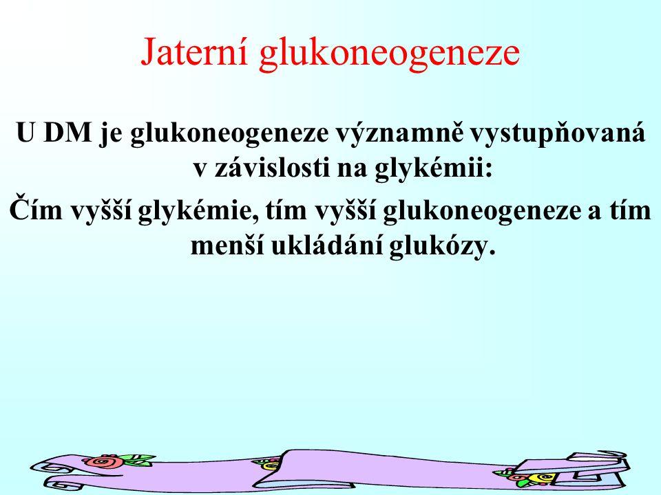 Jaterní glukoneogeneze U DM je glukoneogeneze významně vystupňovaná v závislosti na glykémii: Čím vyšší glykémie, tím vyšší glukoneogeneze a tím menší ukládání glukózy.