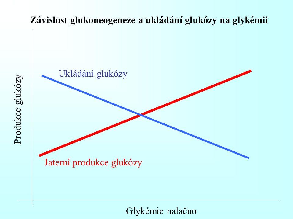 Závislost glukoneogeneze a ukládání glukózy na glykémii Produkce glukózy Glykémie nalačno Jaterní produkce glukózy Ukládání glukózy
