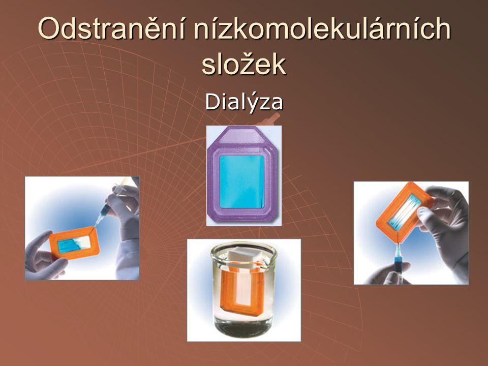 Dialýza