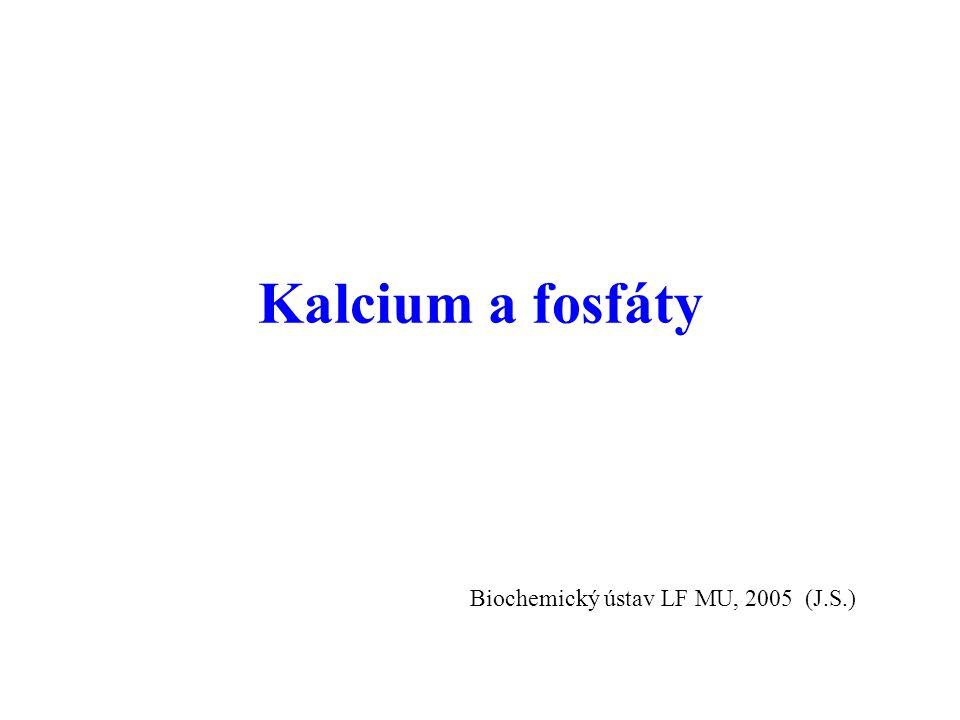 Kalcium a fosfáty Biochemický ústav LF MU, 2005 (J.S.)