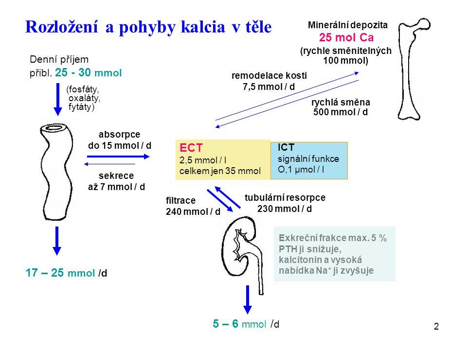 2 Rozložení a pohyby kalcia v těle Denní příjem přibl. 25 - 30 mmol (fosfáty, oxaláty, fytáty) 17 – 25 mmol /d ICT signální funkce O,1 μmol / l ECT 2,
