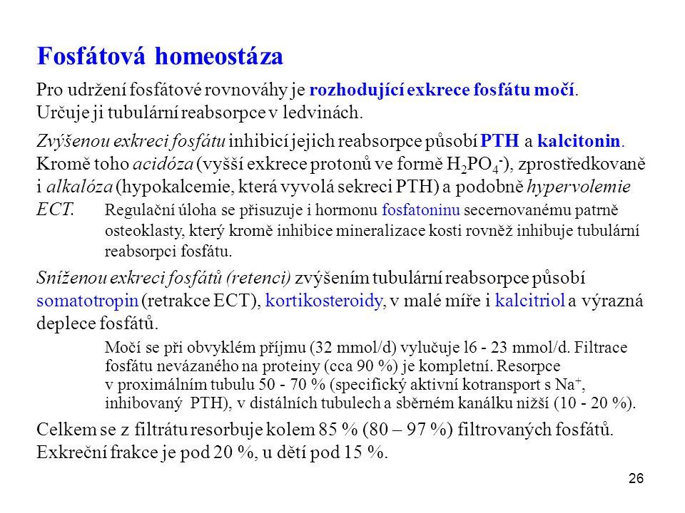 26 Fosfátová homeostáza Pro udržení fosfátové rovnováhy je rozhodující exkrece fosfátu močí. Určuje ji tubulární reabsorpce v ledvinách. Zvýšenou exkr