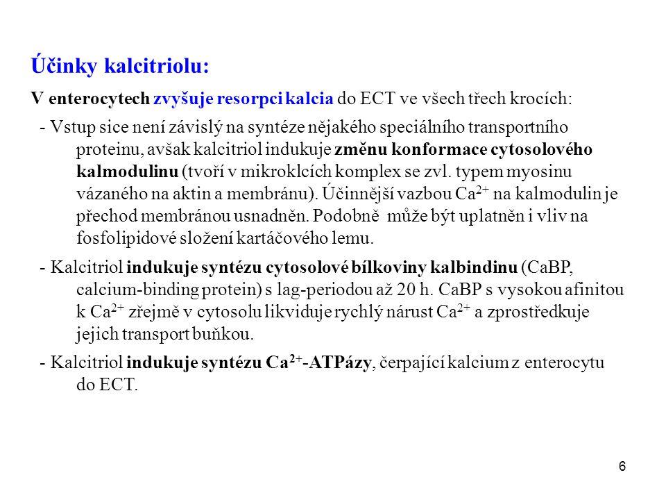 6 Účinky kalcitriolu: V enterocytech zvyšuje resorpci kalcia do ECT ve všech třech krocích: - Vstup sice není závislý na syntéze nějakého speciálního