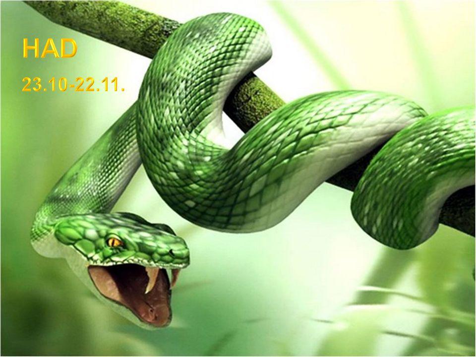 Havran, poněkud strašidelný tvor, byl v mnoha kulturách považován za posvátného. Na rozdíl od některých jiných ptáků nepřenáší nemoci a naopak je velm