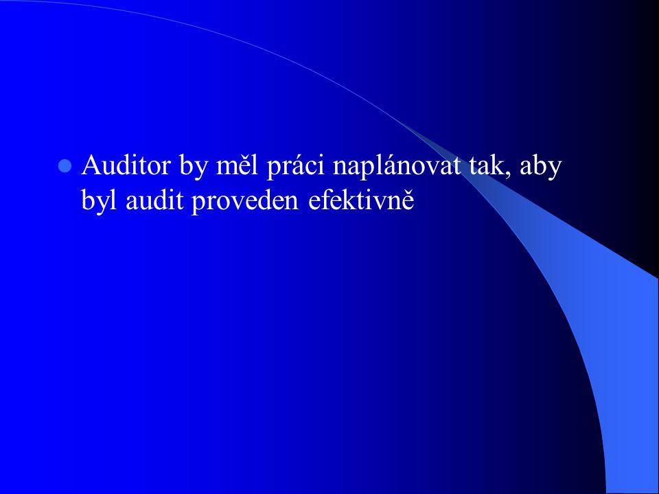 Auditor by měl práci naplánovat tak, aby byl audit proveden efektivně