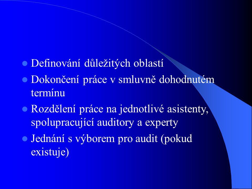 Definování důležitých oblastí Dokončení práce v smluvně dohodnutém termínu Rozdělení práce na jednotlivé asistenty, spolupracující auditory a experty Jednání s výborem pro audit (pokud existuje)