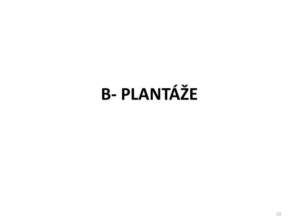 22 B- PLANTÁŽE
