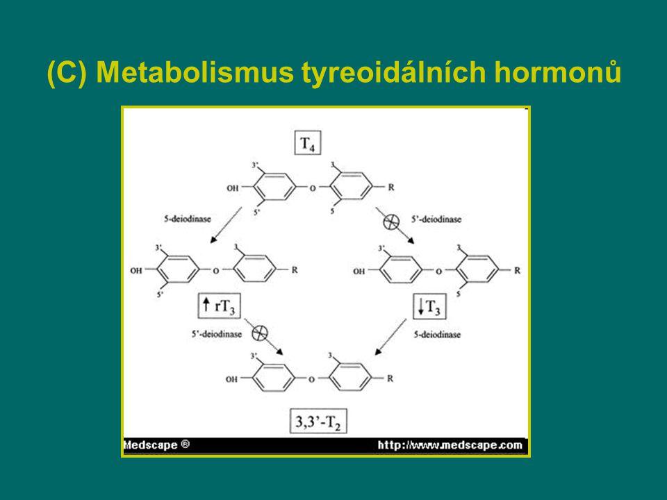 (C) Metabolismus tyreoidálních hormonů