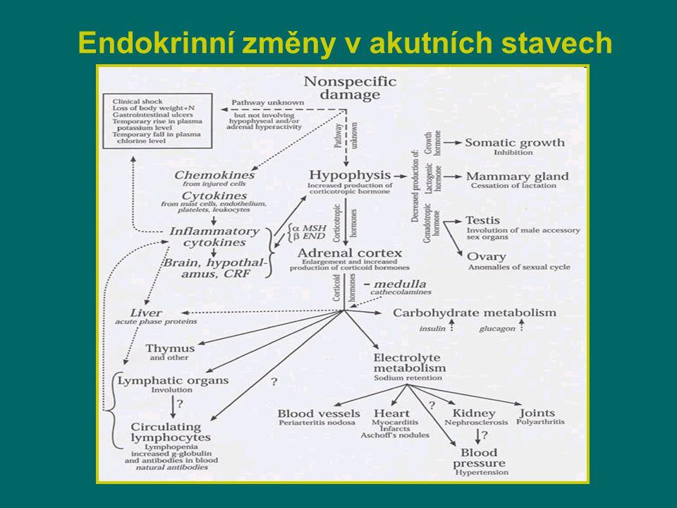 Endokrinní změny v akutních stavech