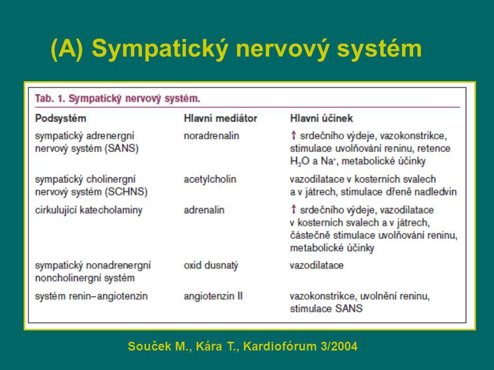 (A) Sympatický nervový systém Souček M., Kára T., Kardiofórum 3/2004