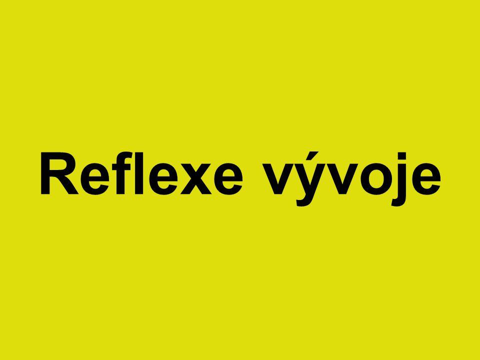 Reflexe vývoje
