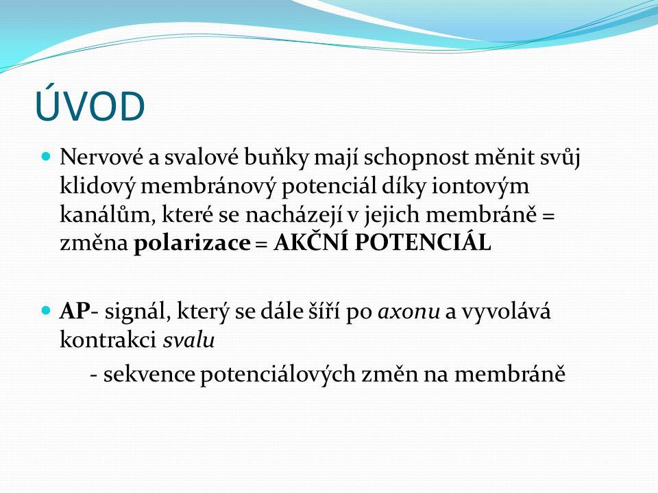 VZNIK AP Podráždění: vychýlením membr.