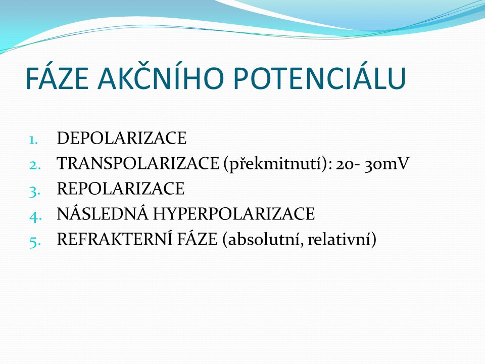 FÁZE AKČNÍHO POTENCIÁLU 1. DEPOLARIZACE 2. TRANSPOLARIZACE (překmitnutí): 20- 30mV 3. REPOLARIZACE 4. NÁSLEDNÁ HYPERPOLARIZACE 5. REFRAKTERNÍ FÁZE (ab