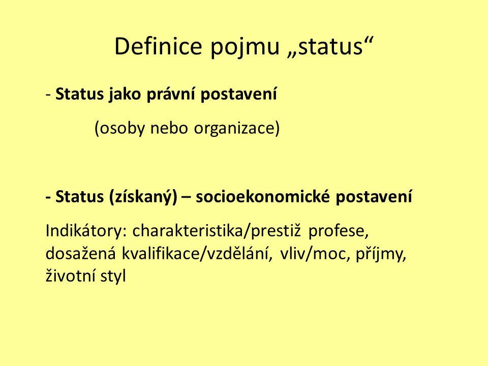 SITUACE V ČR postoj státu možnosti vzdělávání profesní organizace a další aspekty