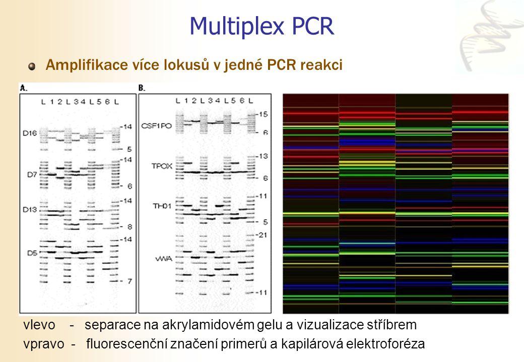 Multiplex PCR Amplifikace více lokusů v jedné PCR reakci vlevo - separace na akrylamidovém gelu a vizualizace stříbrem vpravo - fluorescenční značení
