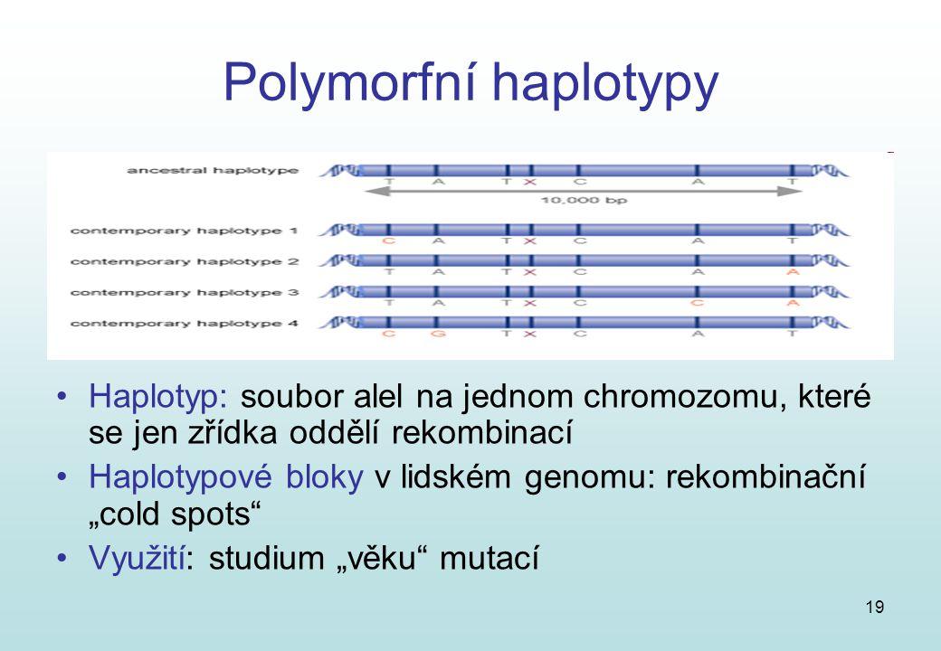 19 Polymorfní haplotypy Haplotyp: soubor alel na jednom chromozomu, které se jen zřídka oddělí rekombinací Haplotypové bloky v lidském genomu: rekombi