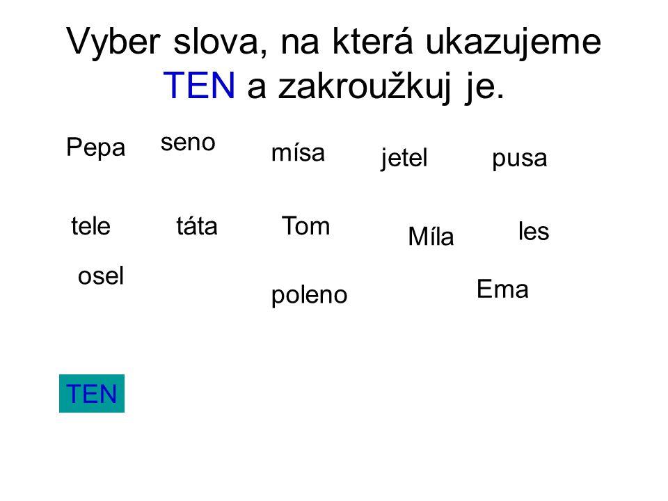 Vyber slova, na která ukazujeme TEN a zakroužkuj je.