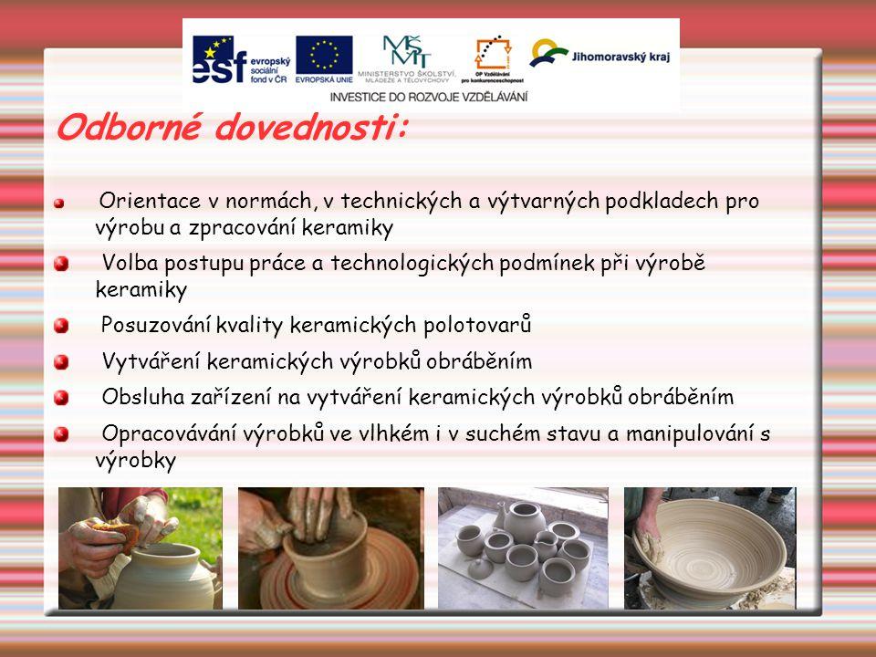 Odborné dovednosti: Orientace v normách, v technických a výtvarných podkladech pro výrobu a zpracování keramiky Volba postupu práce a technologických podmínek při výrobě keramiky Posuzování kvality keramických polotovarů Vytváření keramických výrobků obráběním Obsluha zařízení na vytváření keramických výrobků obráběním Opracovávání výrobků ve vlhkém i v suchém stavu a manipulování s výrobky