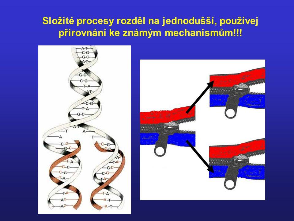 Složité procesy rozděl na jednodušší, používej přirovnání ke známým mechanismům!!!