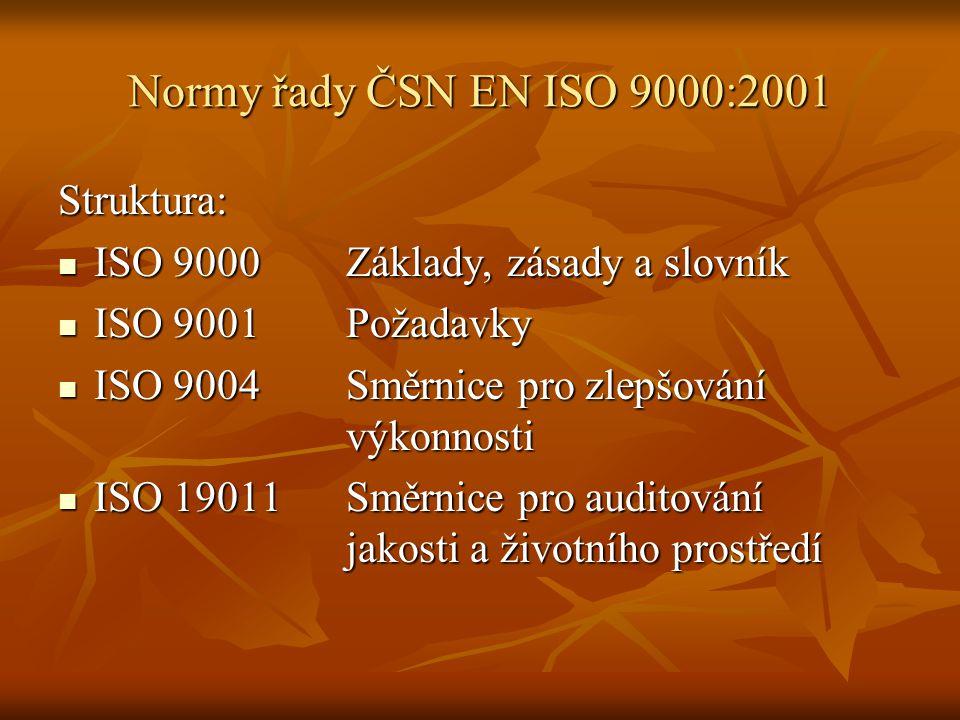 Normy řady ČSN EN ISO 9000:2001 Struktura: ISO 9000Základy, zásady a slovník ISO 9000Základy, zásady a slovník ISO 9001Požadavky ISO 9001Požadavky ISO