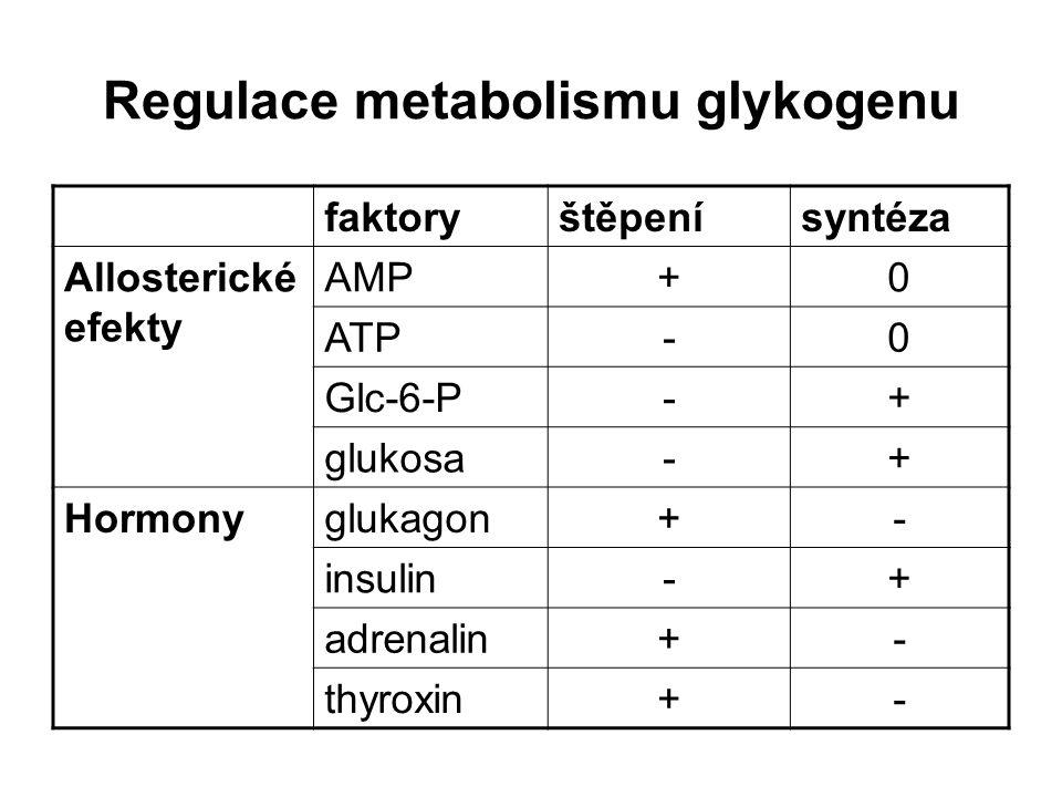 Regulace metabolismu glykogenu faktoryštěpenísyntéza Allosterické efekty AMP+0 ATP-0 Glc-6-P-+ glukosa-+ Hormonyglukagon+- insulin-+ adrenalin+- thyro