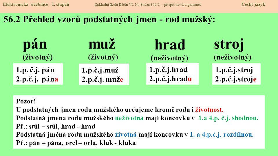 56.2 Přehled vzorů podstatných jmen - rod mužský: Elektronická učebnice - I.