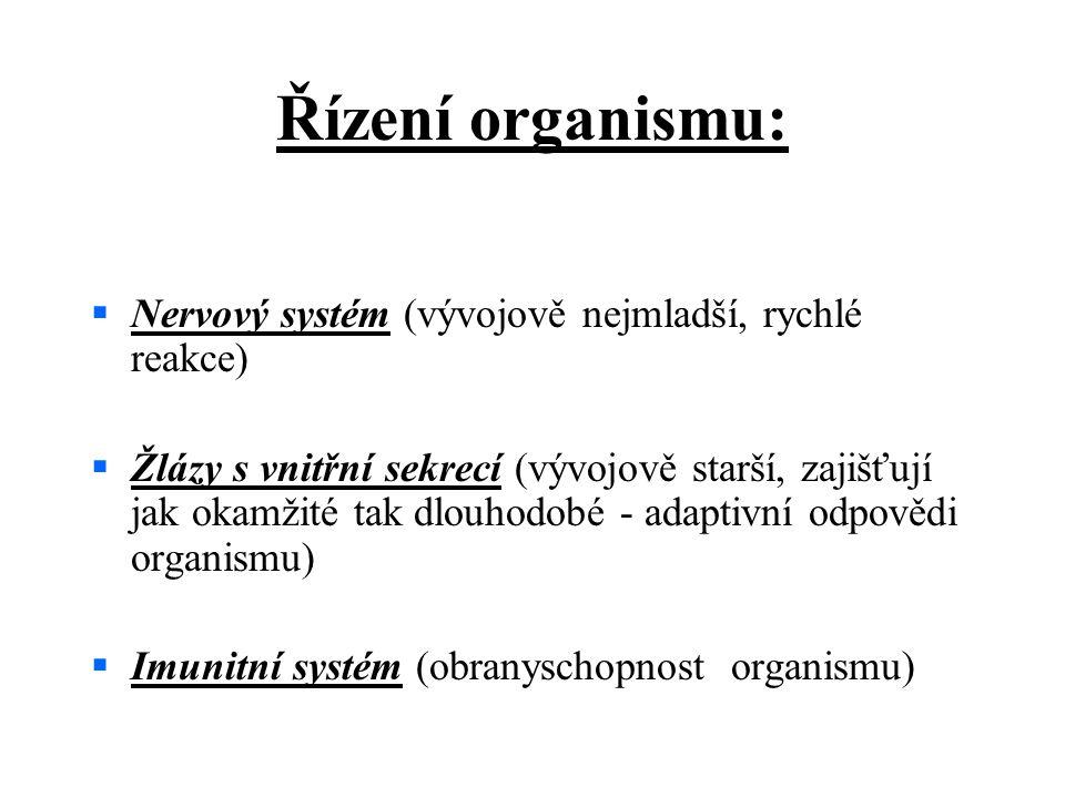 Řízení organismu:  Nervový systém (vývojově nejmladší, rychlé reakce)  Žlázy s vnitřní sekrecí (vývojově starší, zajišťují jak okamžité tak dlouhodobé - adaptivní odpovědi organismu)  Imunitní systém (obranyschopnost organismu)