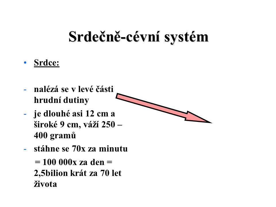 Srdečně-cévní systém Srdce: -nalézá se v levé části hrudní dutiny -je dlouhé asi 12 cm a široké 9 cm, váží 250 – 400 gramů -stáhne se 70x za minutu = 100 000x za den = 2,5bilion krát za 70 let života