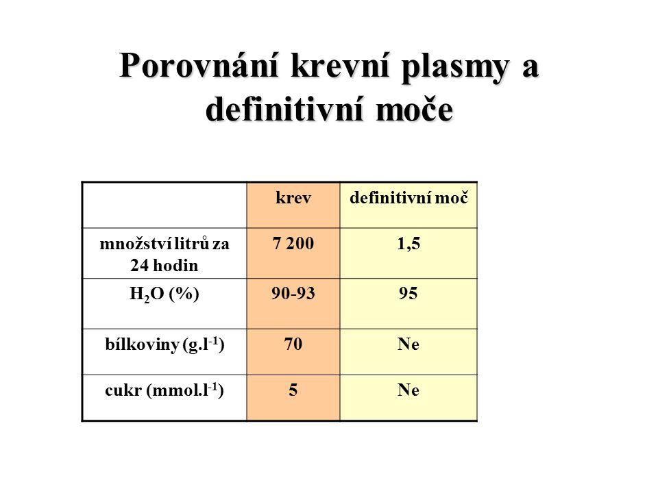 Porovnání krevní plasmy a definitivní moče krevdefinitivní moč množství litrů za 24 hodin 7 2001,5 H 2 O (%)90-9395 bílkoviny (g.l -1 )70Ne cukr (mmol.l -1 )5Ne