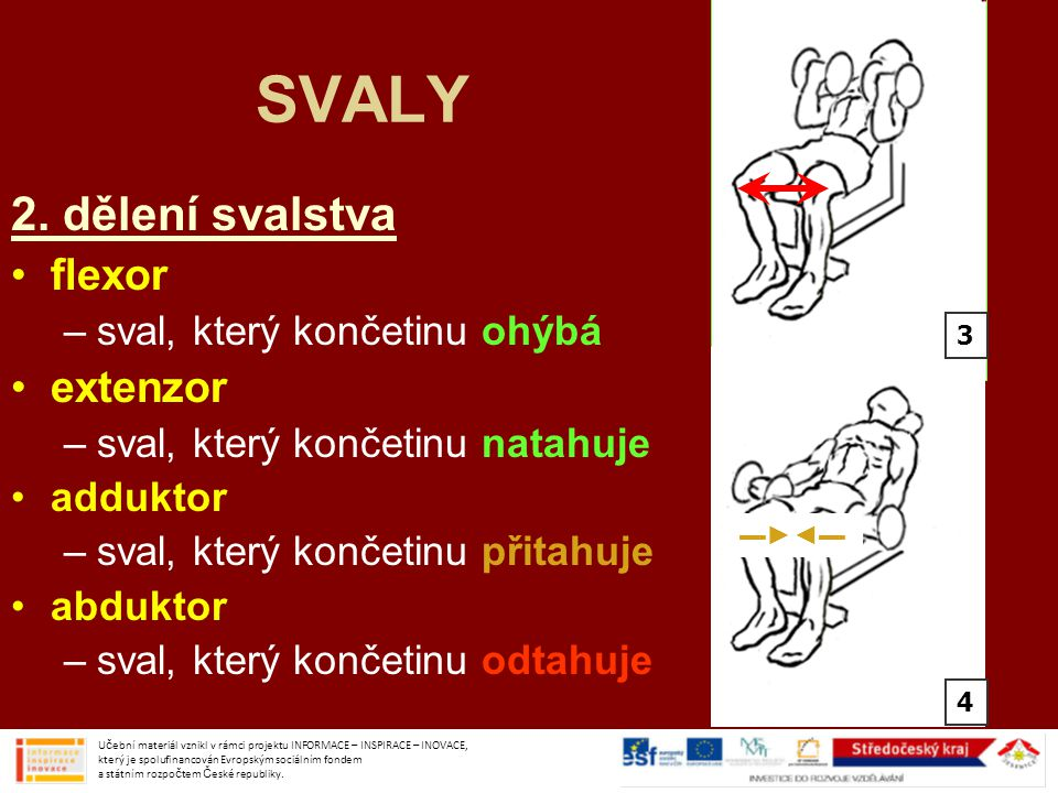 SVALY 2.