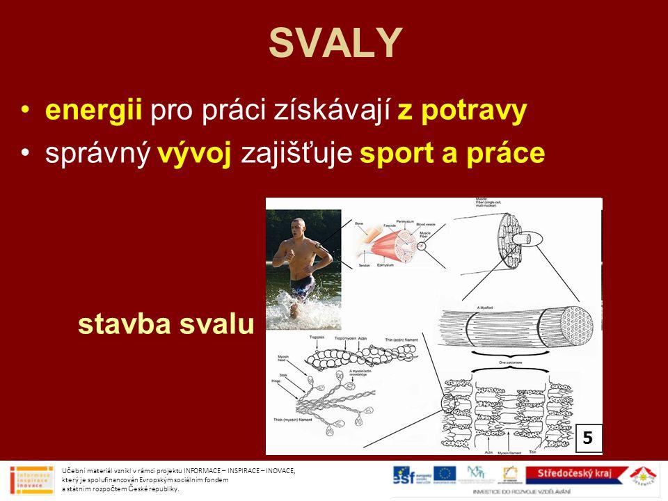 SVALY HLAVY A KRKU Učební materiál vznikl v rámci projektu INFORMACE – INSPIRACE – INOVACE, který je spolufinancován Evropským sociálním fondem a státním rozpočtem České republiky.