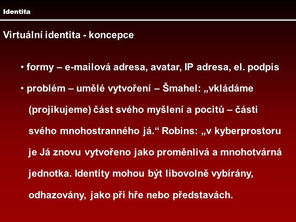 """Identita Virtuální identita - koncepce formy – e-mailová adresa, avatar, IP adresa, el. podpis problém – umělé vytvoření – Šmahel: """"vkládáme (projikuj"""