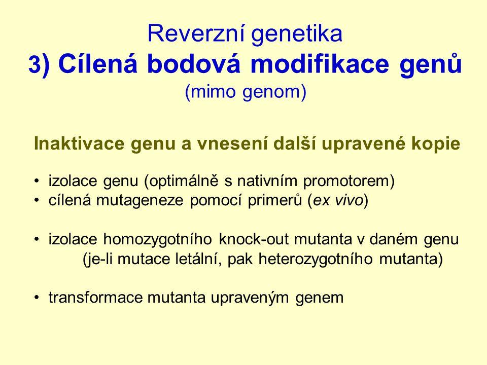 Reverzní genetika 3 ) Cílená bodová modifikace genů (mimo genom) Inaktivace genu a vnesení další upravené kopie izolace genu (optimálně s nativním promotorem) cílená mutageneze pomocí primerů (ex vivo) izolace homozygotního knock-out mutanta v daném genu (je-li mutace letální, pak heterozygotního mutanta) transformace mutanta upraveným genem