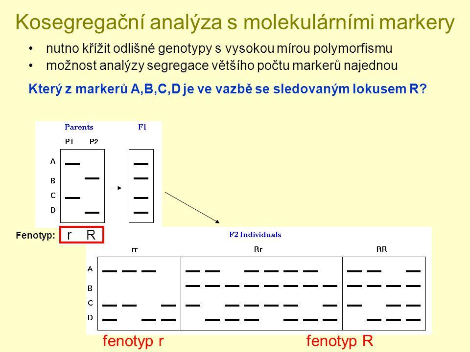 Kosegregační analýza s molekulárními markery nutno křížit odlišné genotypy s vysokou mírou polymorfismu možnost analýzy segregace většího počtu markerů najednou Který z markerů A,B,C,D je ve vazbě se sledovaným lokusem R.