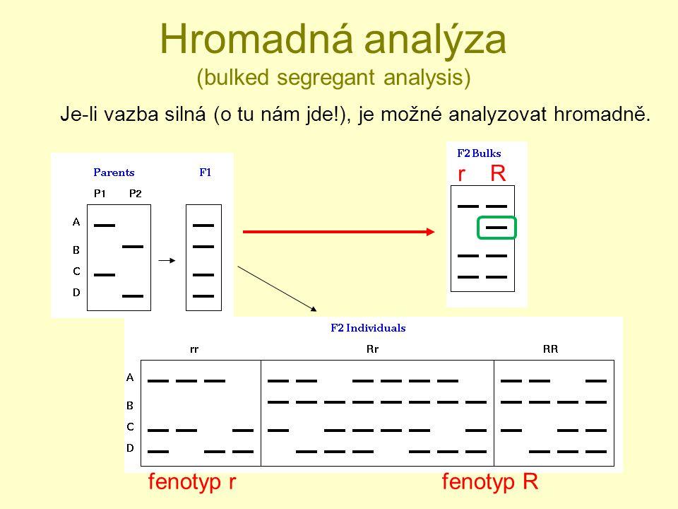 Hromadná analýza (bulked segregant analysis) Je-li vazba silná (o tu nám jde!), je možné analyzovat hromadně.