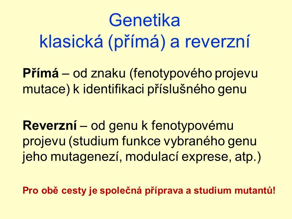 Genetika klasická (přímá) a reverzní Přímá – od znaku (fenotypového projevu mutace) k identifikaci příslušného genu Reverzní – od genu k fenotypovému projevu (studium funkce vybraného genu jeho mutagenezí, modulací exprese, atp.) Pro obě cesty je společná příprava a studium mutantů!