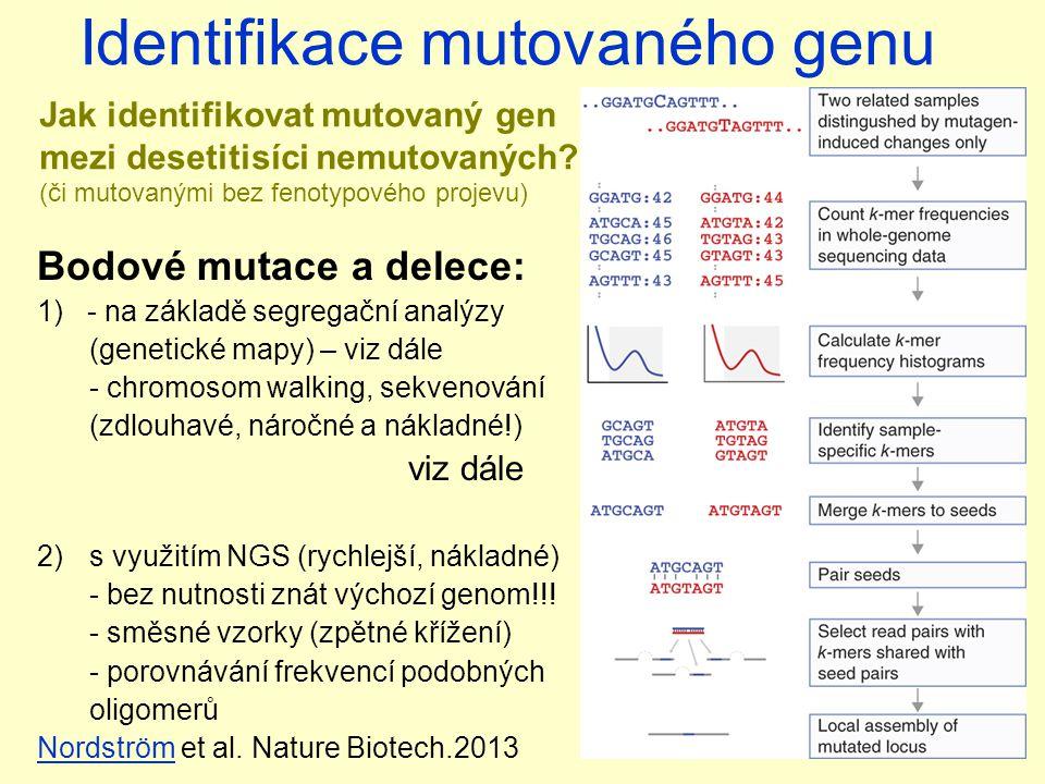 Bodové mutace a delece: 1) - na základě segregační analýzy (genetické mapy) – viz dále - chromosom walking, sekvenování (zdlouhavé, náročné a nákladné!) viz dále 2)s využitím NGS (rychlejší, nákladné) - bez nutnosti znát výchozí genom!!.