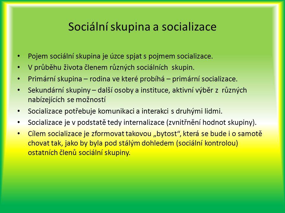Sociální skupina a socializace Pojem sociální skupina je úzce spjat s pojmem socializace. V průběhu života členem různých sociálních skupin. Primární