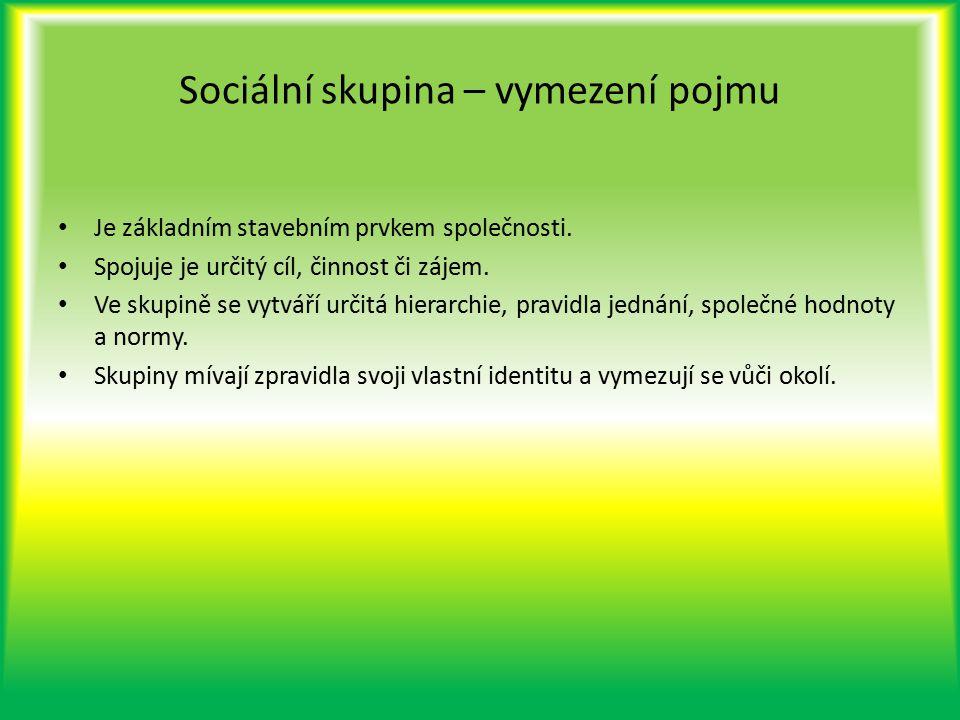 Sociální skupina – vymezení pojmu Je základním stavebním prvkem společnosti. Spojuje je určitý cíl, činnost či zájem. Ve skupině se vytváří určitá hie