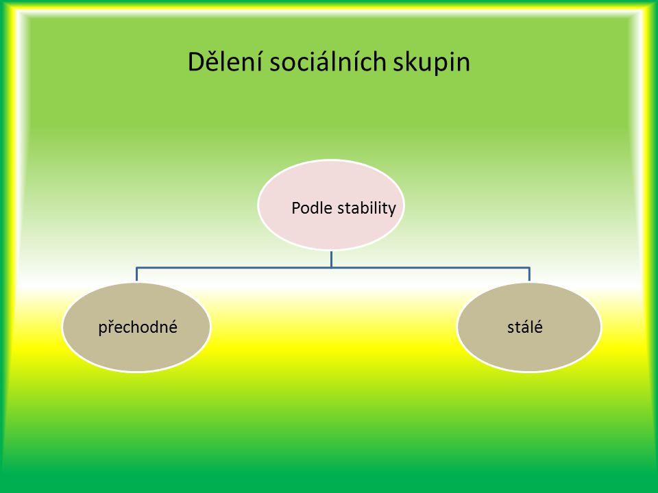Dělení sociálních skupin Podle stability přechodné stálé