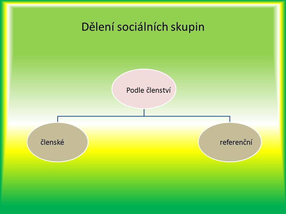 Dělení sociálních skupin Podle členství členské referenční