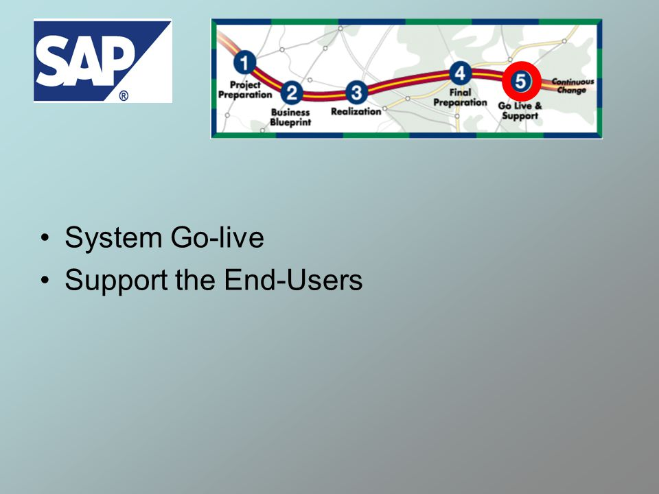 System Go-live Support the End-Users