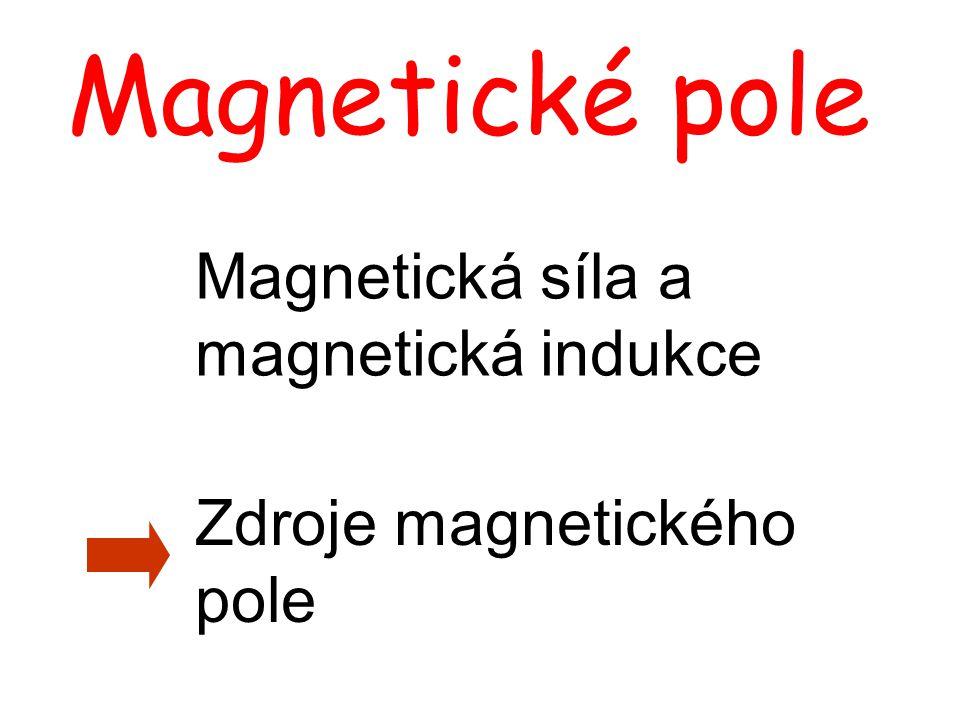 Magnetická síla a magnetická indukce Zdroje magnetického pole Magnetické pole