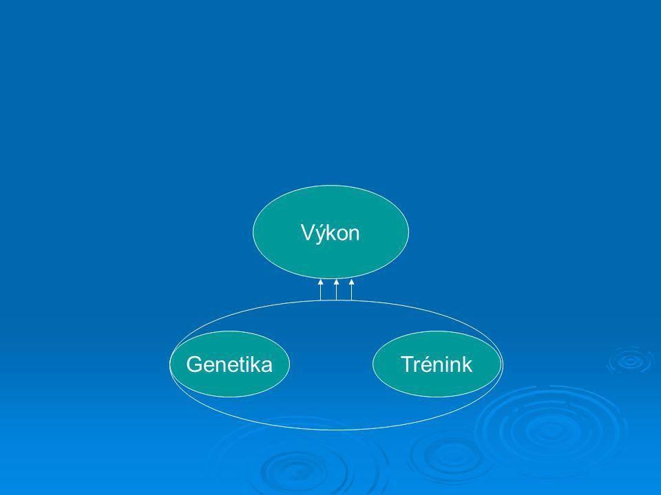 Výkon GenetikaTrénink