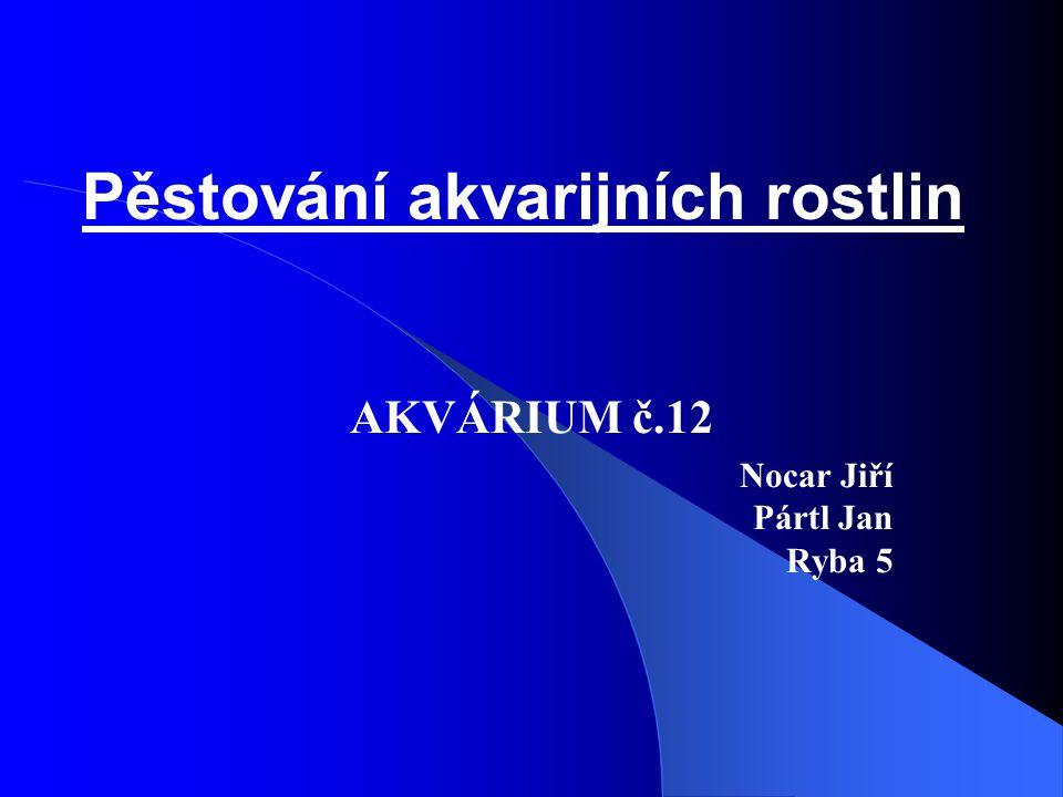 Pěstování akvarijních rostlin AKVÁRIUM č.12 Nocar Jiří Pártl Jan Ryba 5