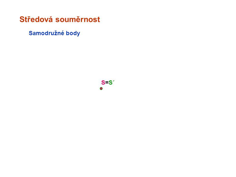 Středová souměrnost S Samodružné body S=S´