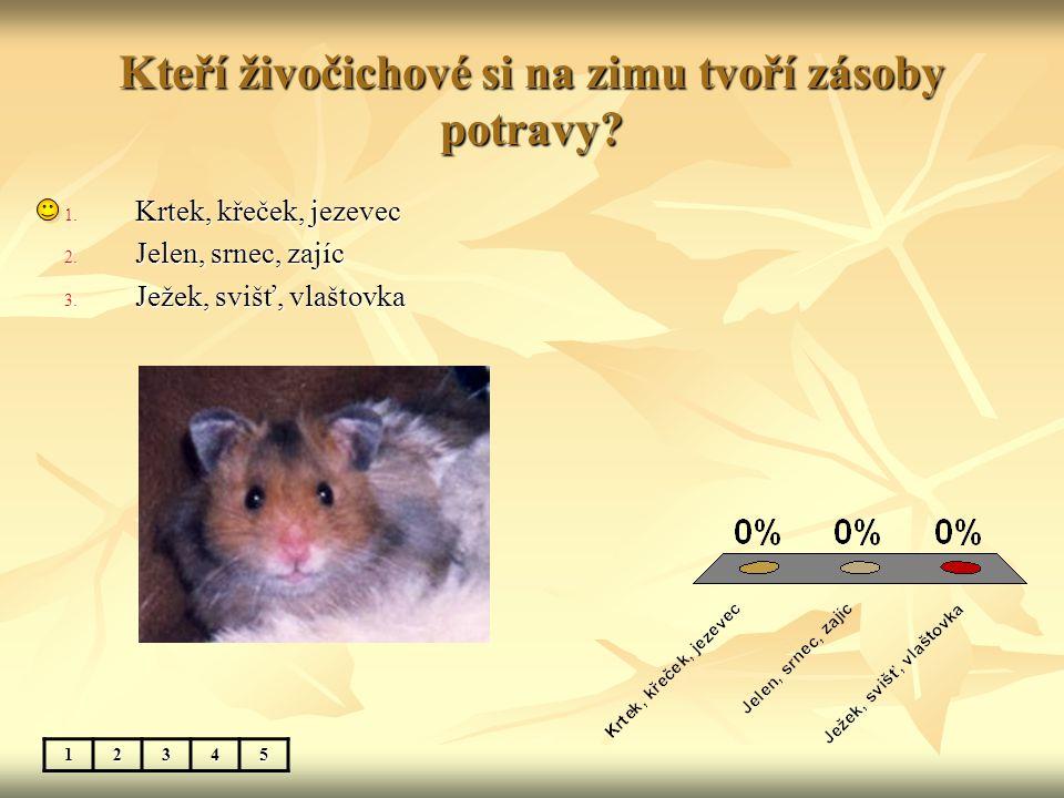 Kteří živočichové si na zimu tvoří zásoby potravy? 12345 1. Krtek, křeček, jezevec 2. Jelen, srnec, zajíc 3. Ježek, svišť, vlaštovka