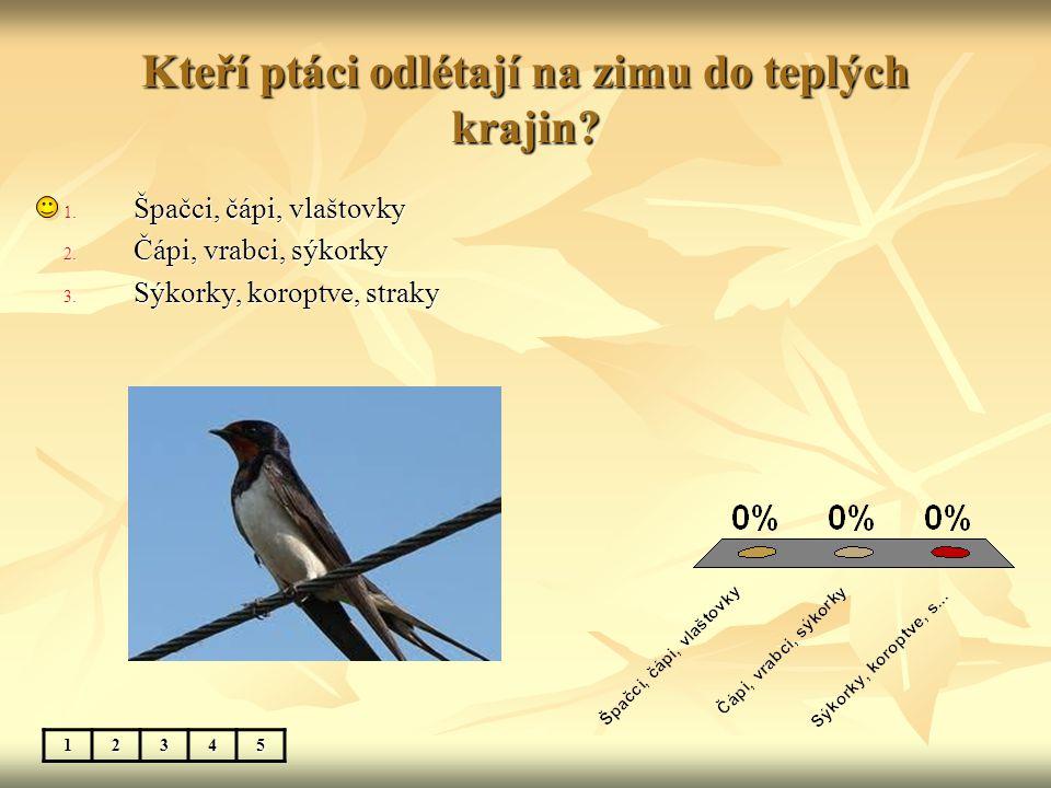 Kteří ptáci odlétají na zimu do teplých krajin? 12345 1. Špačci, čápi, vlaštovky 2. Čápi, vrabci, sýkorky 3. Sýkorky, koroptve, straky