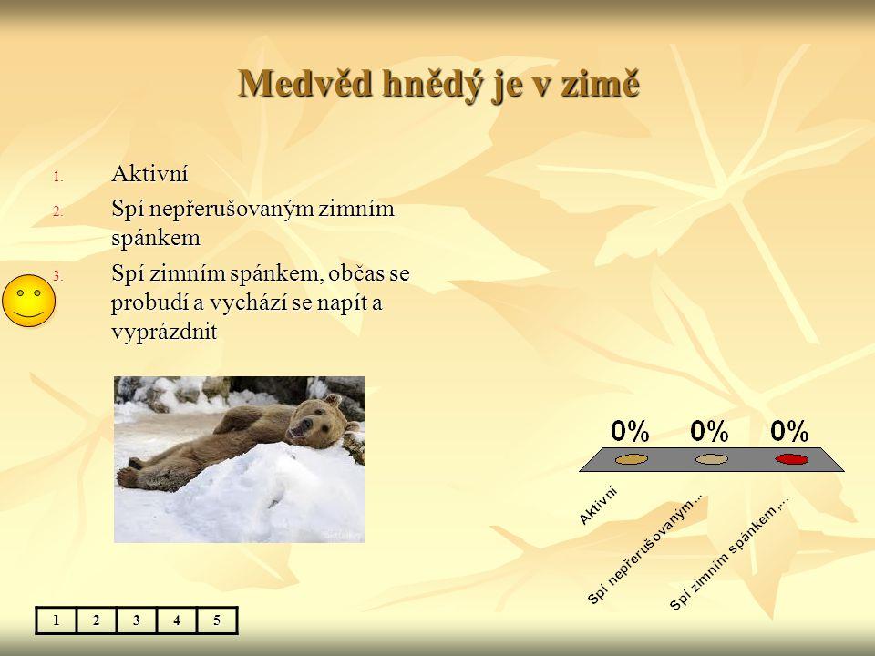 Medvěd hnědý je v zimě 12345 1. Aktivní 2. Spí nepřerušovaným zimním spánkem 3. Spí zimním spánkem, občas se probudí a vychází se napít a vyprázdnit
