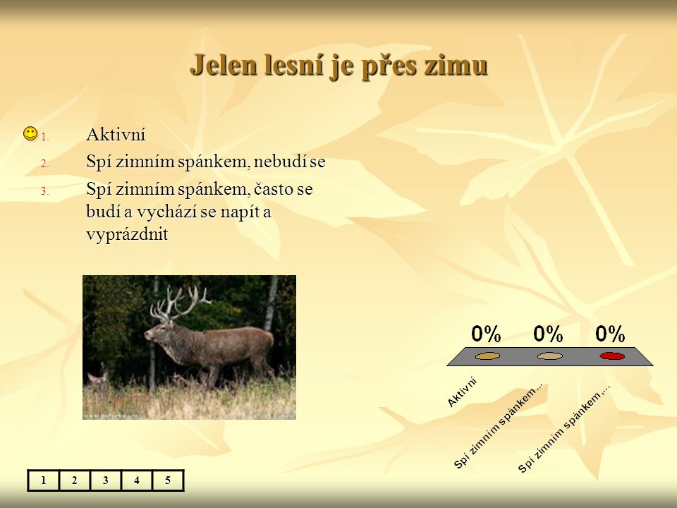 Jelen lesní je přes zimu 12345 1. Aktivní 2. Spí zimním spánkem, nebudí se 3. Spí zimním spánkem, často se budí a vychází se napít a vyprázdnit